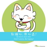 The Ninchanese logo shows a cat smiling. Ninchanese helps you learn Chinese online, especially grammar.