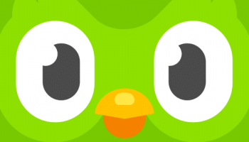 Duolingo Review: Is Duolingo Effective?