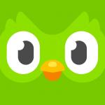 Duolingo Review: Is Duolingo Effective?