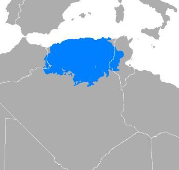 A map showing the region of Algeria where people speak Algerian Arabic. When you learn Arabic with this dialect, you will be able to communicate easily in this region.