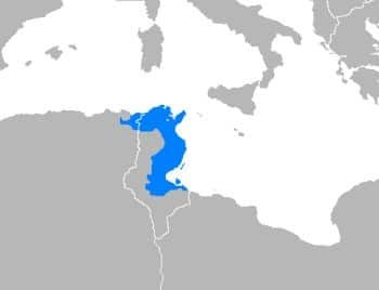 A map showing where Tunisian Arabic speakers live. This area is very close to Italy and Spain, and is therefore an important dialect of Arabic to learn.